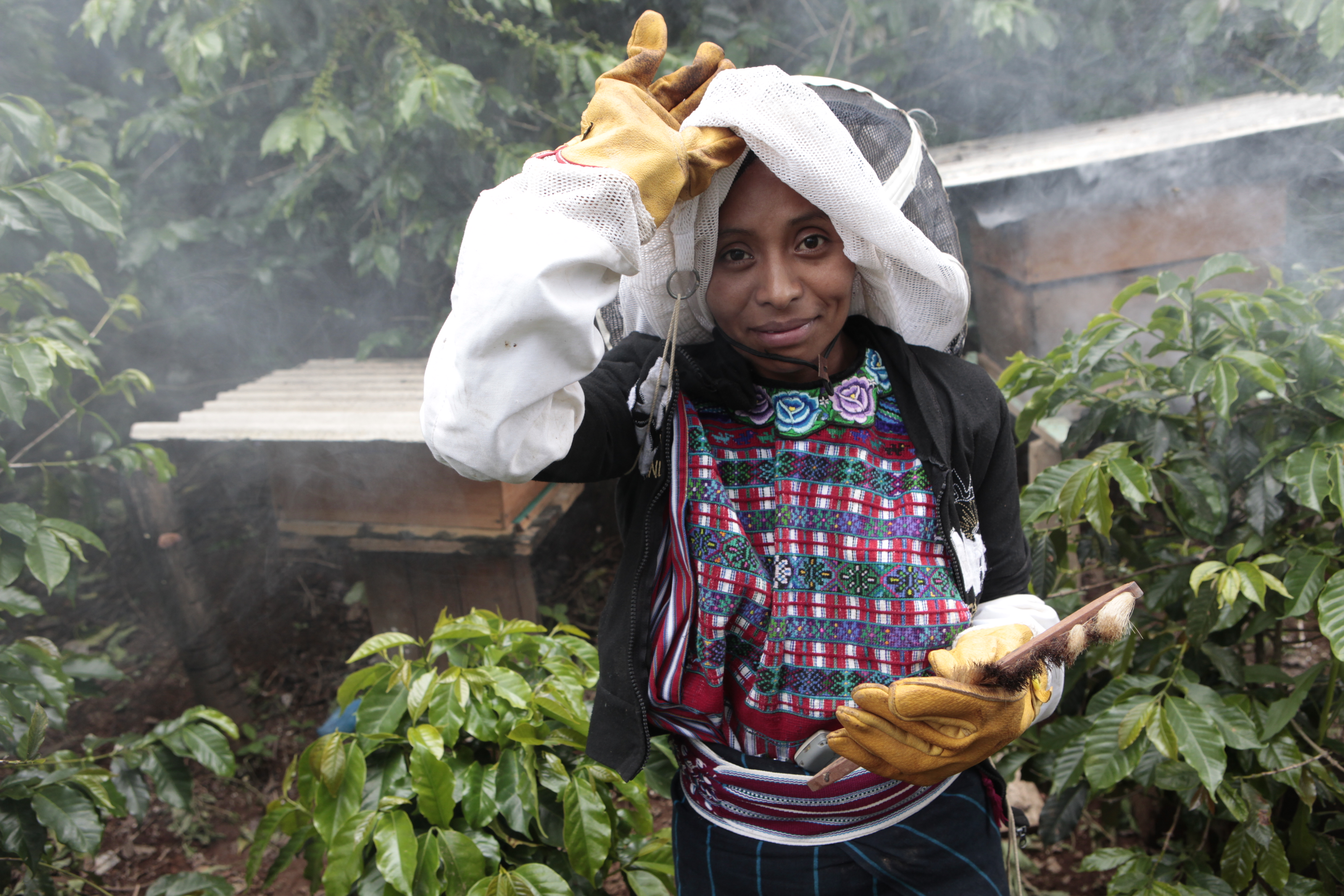 Improving Food Security and Nutrition of Coffee Farm Workers' Families (Project # 23-1327-60)