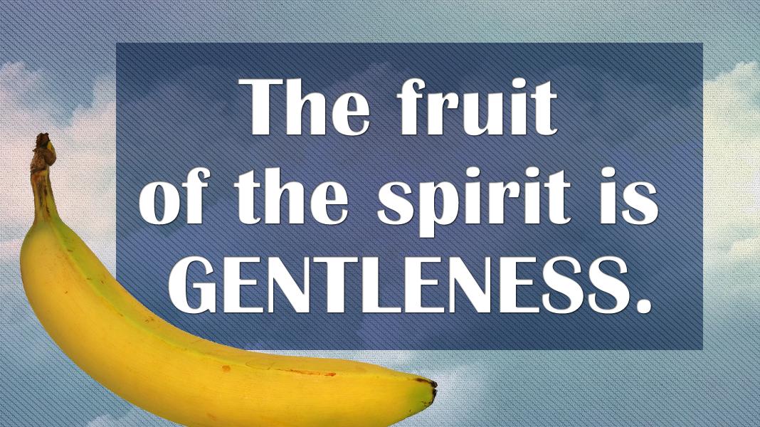 Empowered-7-11-21-Gentleness-reflection