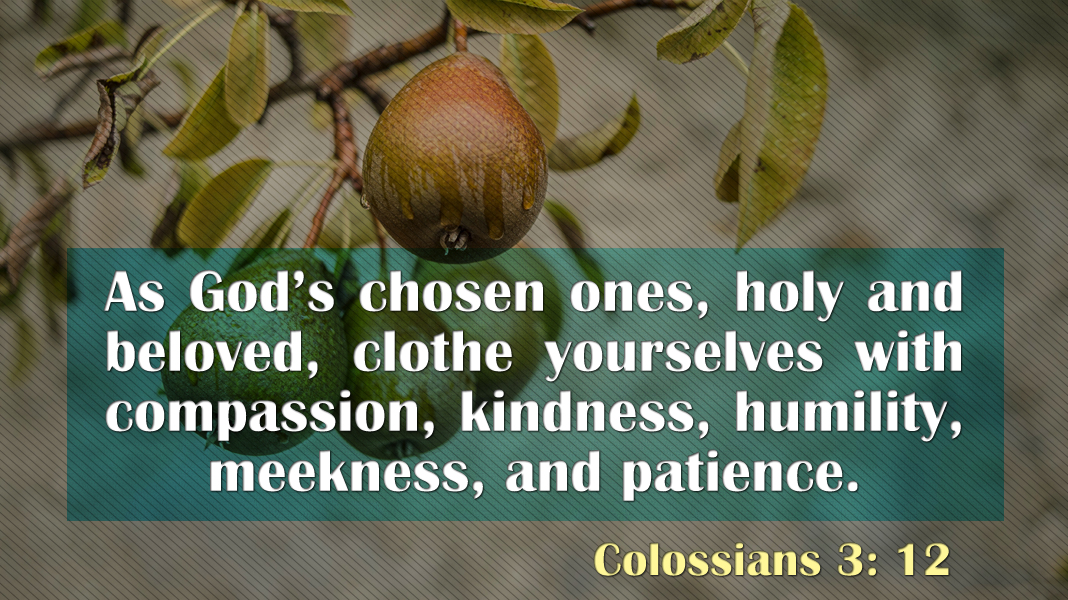 Empowered-6-20-21-Kindness-Colossians