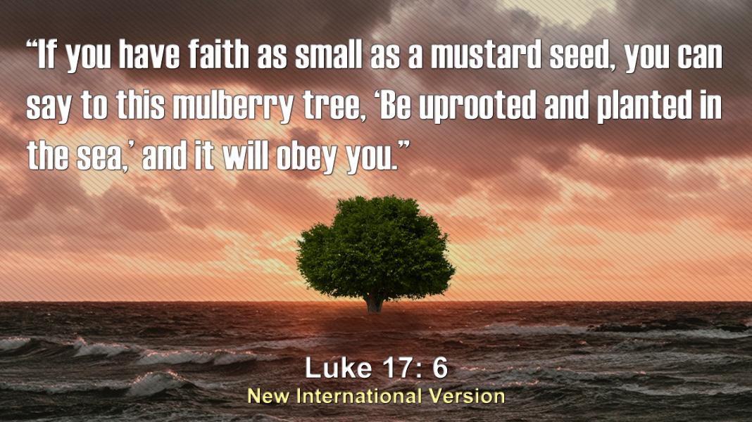 Family-of-God-9-26-21-Faith-Luke