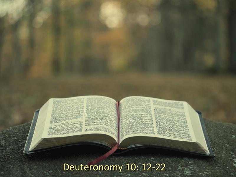 Unafraid-6-14-20-Other-Deuteronomy