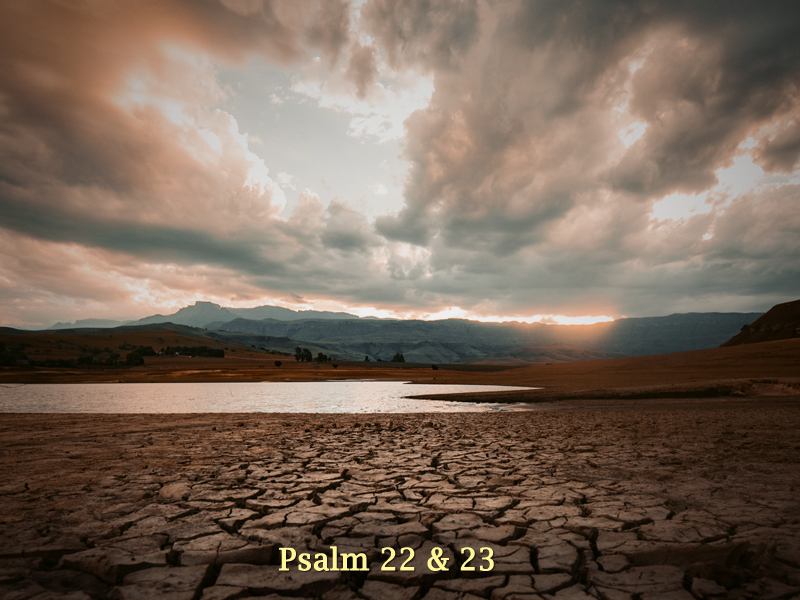 Good-Thing-11-22-20-Angry-Psalms