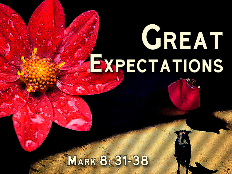 Great Expectations 1a