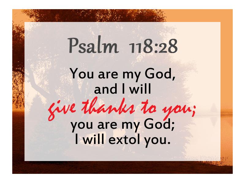 Psalm 118 28 NRSV
