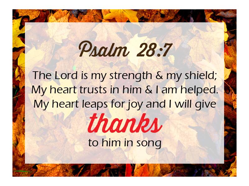 Psalm 28 7 NIV