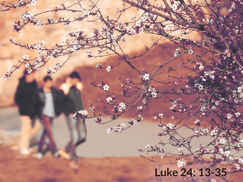 Lead-7-14-19-Hope-Emmaus-scripture