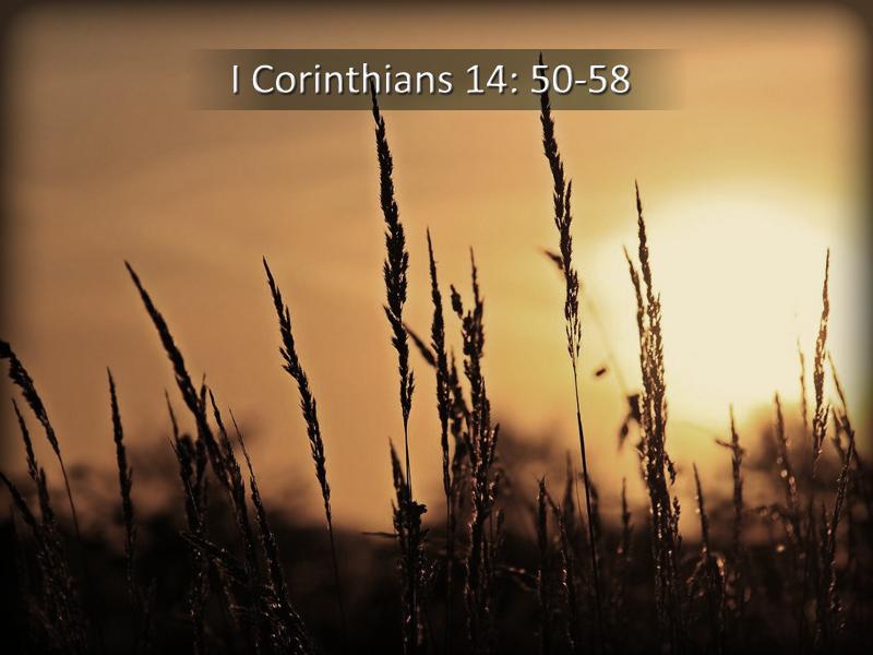 Unafraid-7-5-20-Dying-I-Corinthians