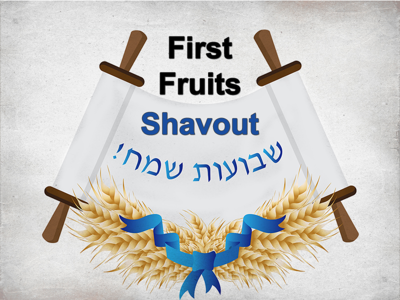 Party-Time-8-23-20-Holy-scripture-3-First-Fruits