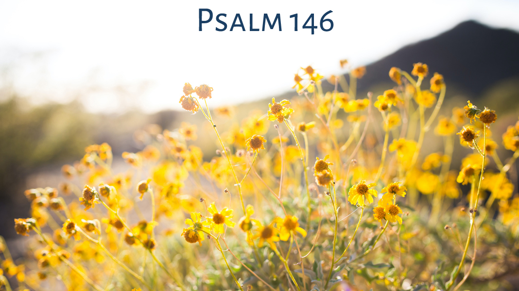 Quest-8-1-21-The-Encounter-Psalm
