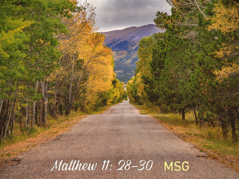 Sabbath-9-27-20-Weary-Matthew-MSG