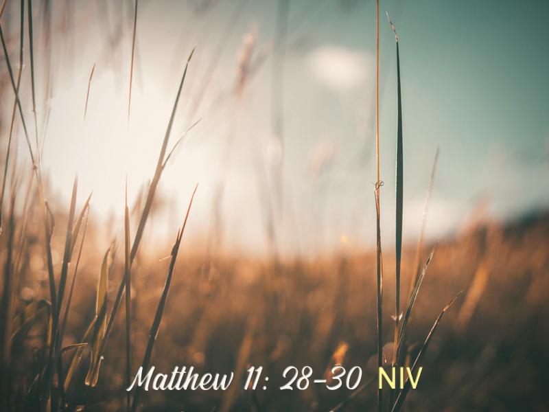 Sabbath-9-27-20-Weary-Matthew-NIV