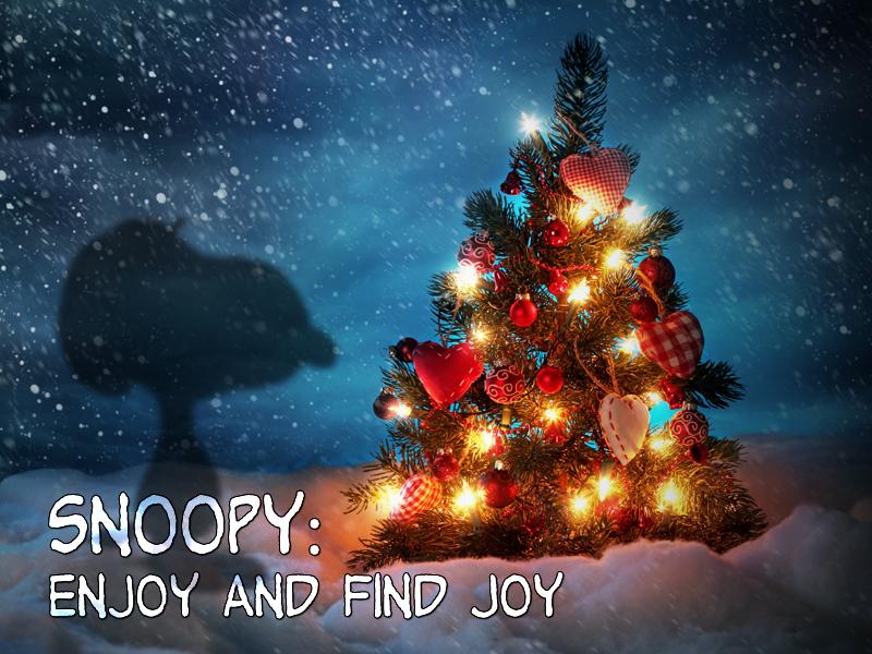 Advent-12-16-18-Snoopy-Enjoy-1