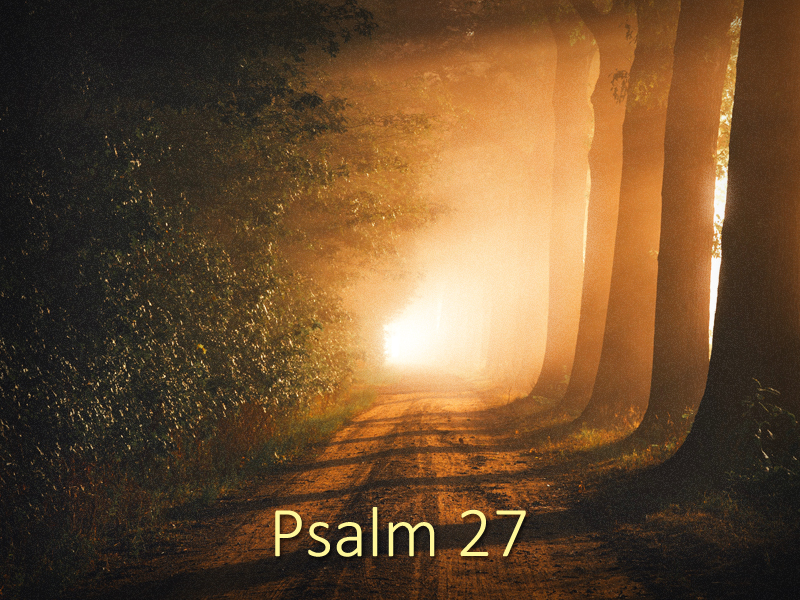 Unafraid-6-7-20-The-Only-Thing-Psalm-27
