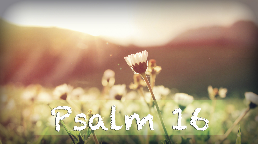 Heart-4-26-20-With-Glad-Hearts-Psalm-16