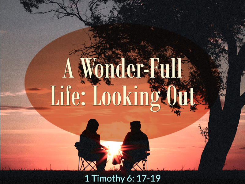 Wonder-Full-10-18-20-Looking-Out-1a