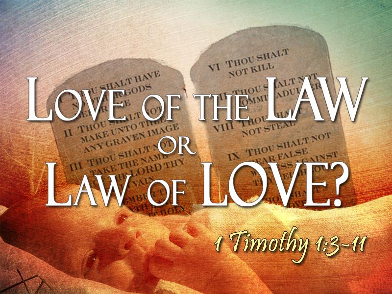 Lover in law 2