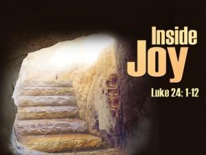 Inside Joy 1